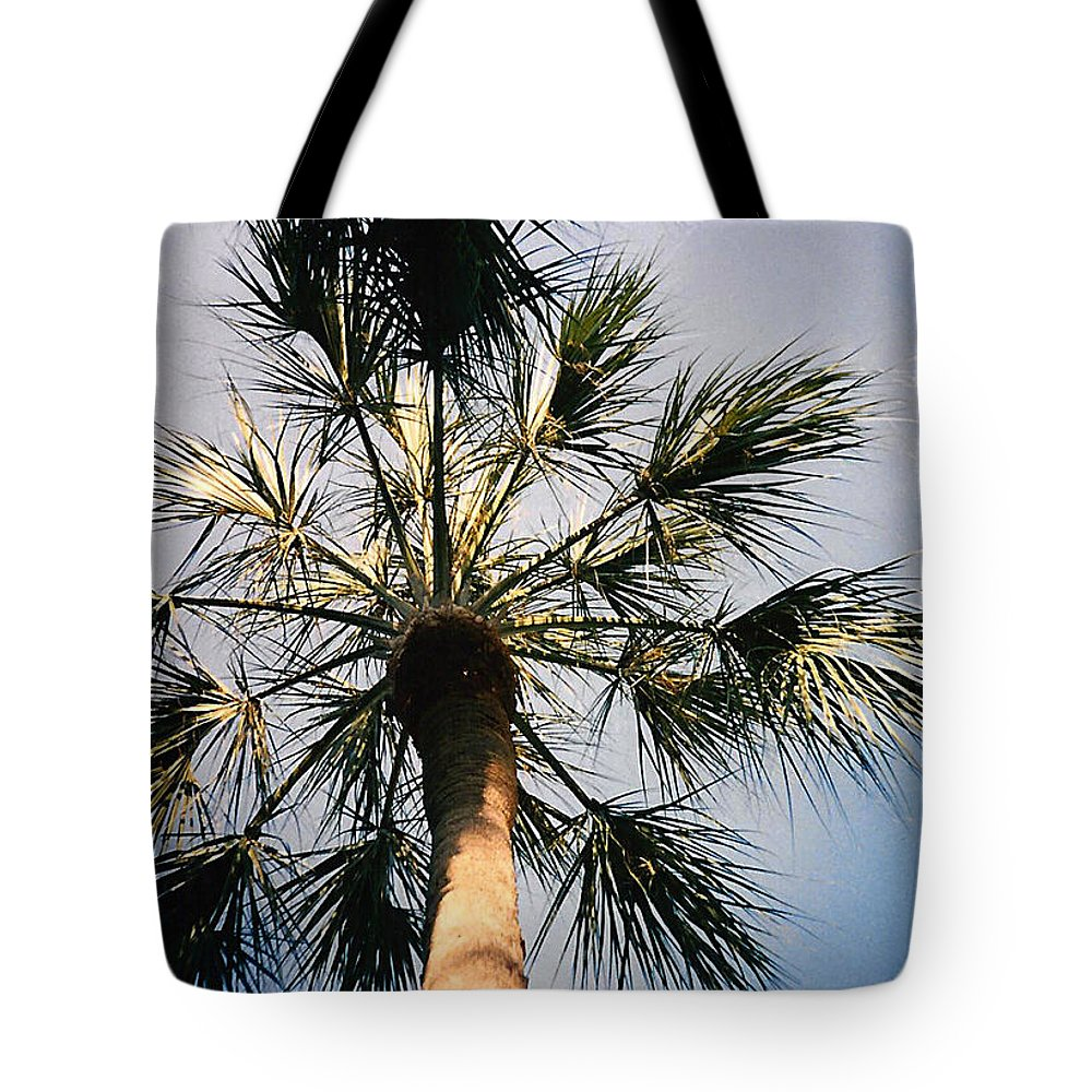 Florida Tote Bag featuring the photograph Florida Trees by Verana Stark