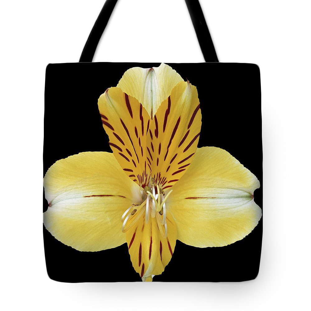 Flower Tote Bag featuring the photograph Flower 001 by Ingrid Smith-Johnsen