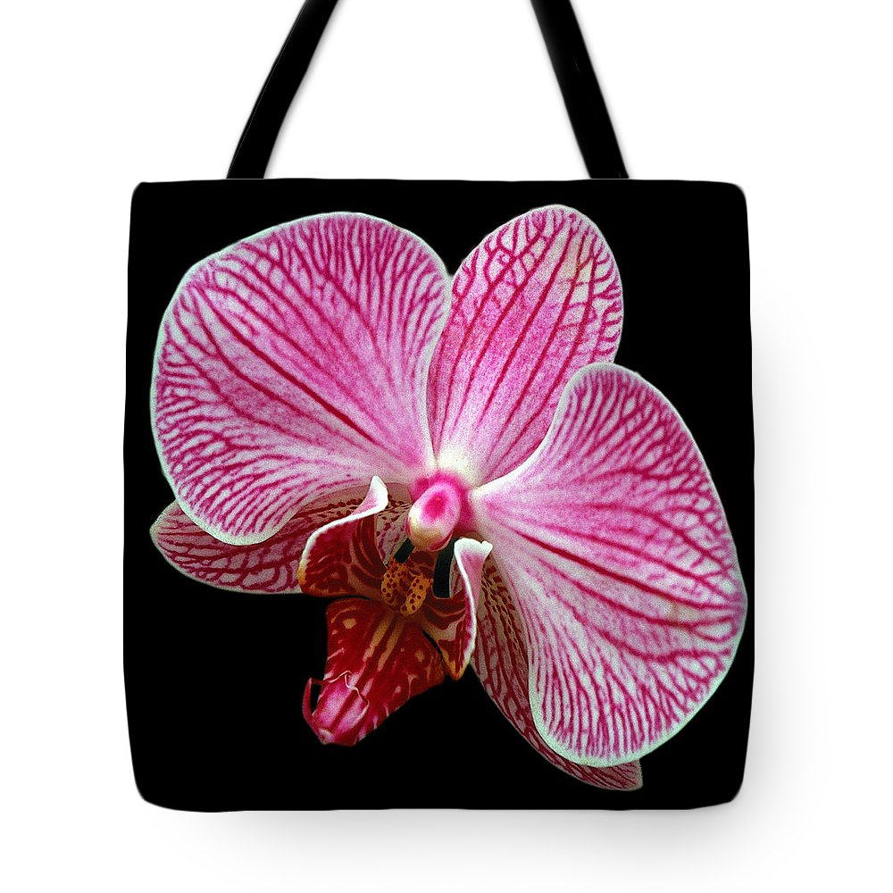 Flower Tote Bag featuring the photograph Flower 280 by Ingrid Smith-Johnsen