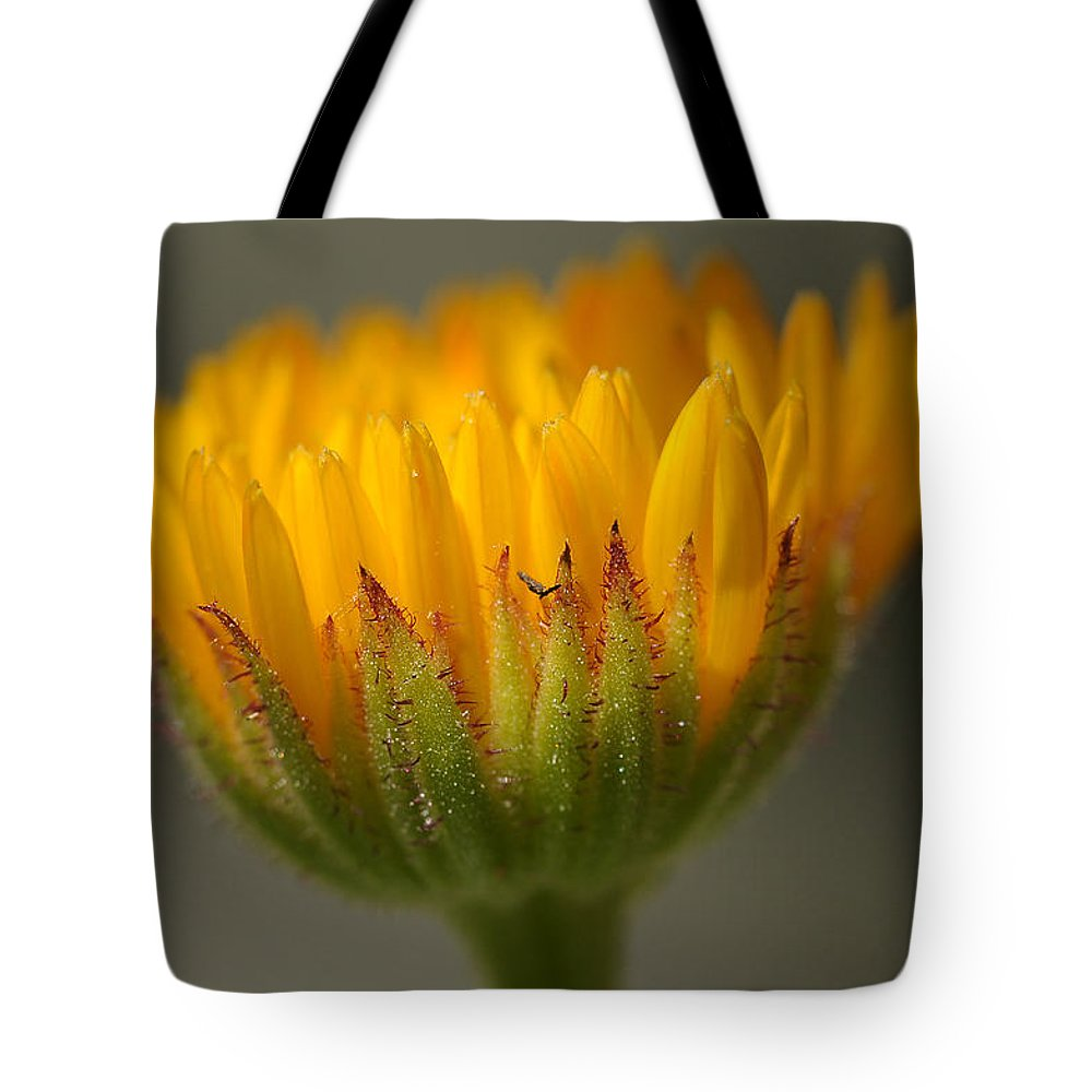 Macro Tote Bag featuring the photograph Flower Awakening by Liz Mackney