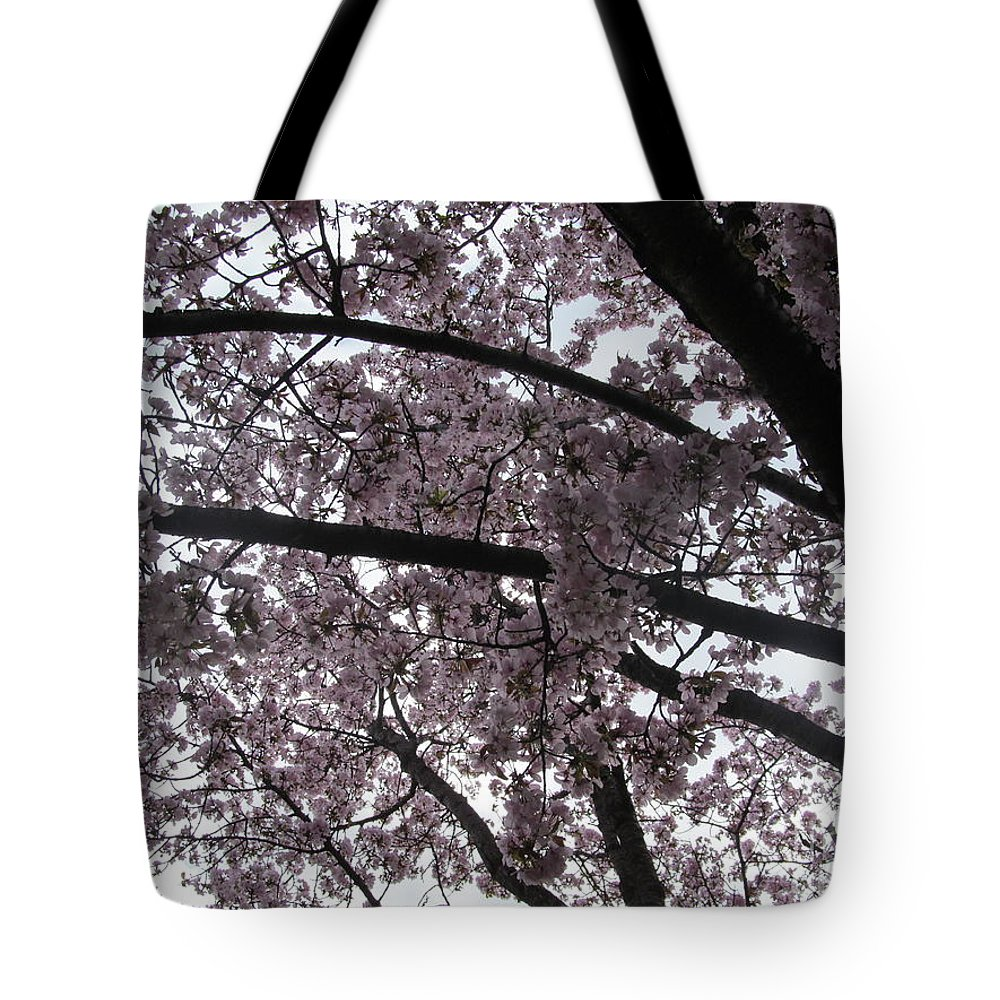 Flower Tote Bag featuring the photograph Flower Canopy And Sky by Tina M Wenger