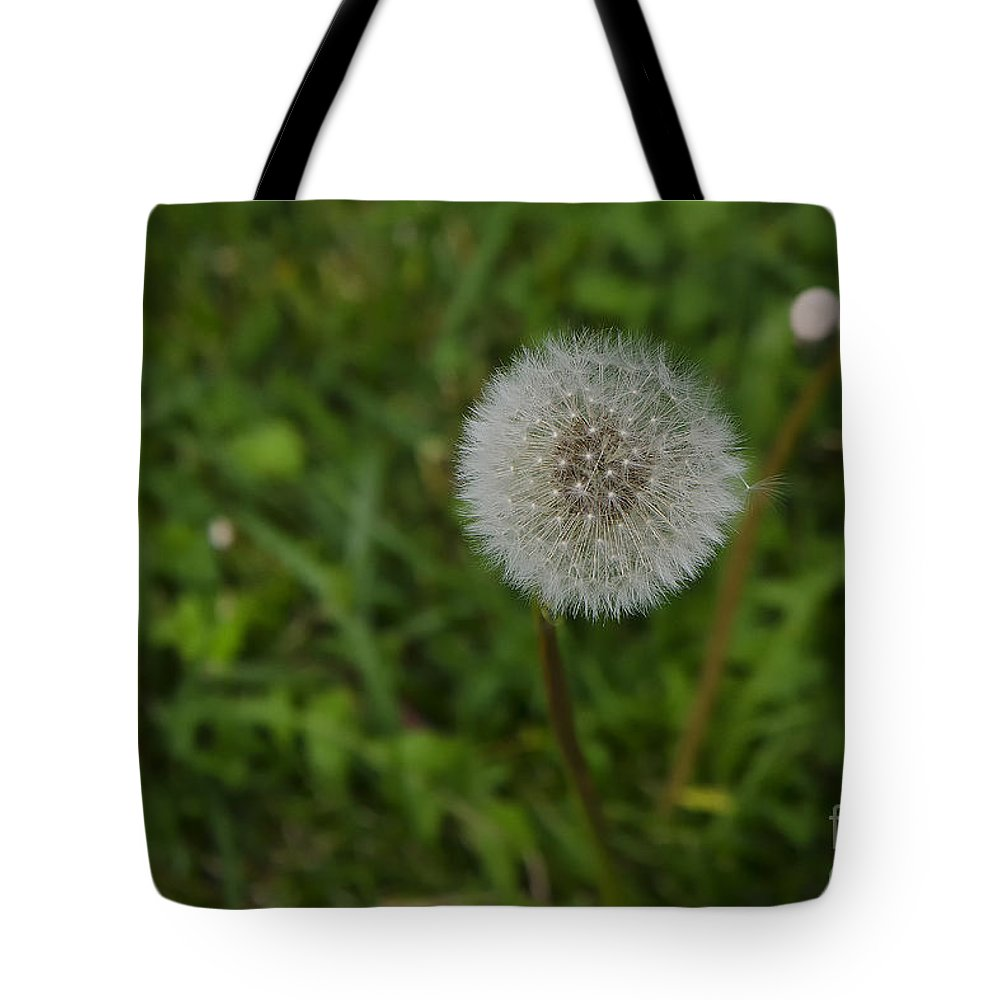 Flower Tote Bag featuring the photograph Flower by Giovanni Chianese