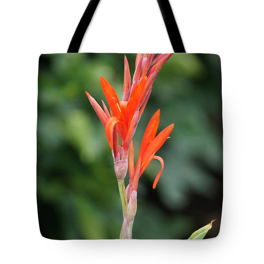 Beautiful Flower Tote Bag featuring the photograph Flower by Jeffery L Bowers
