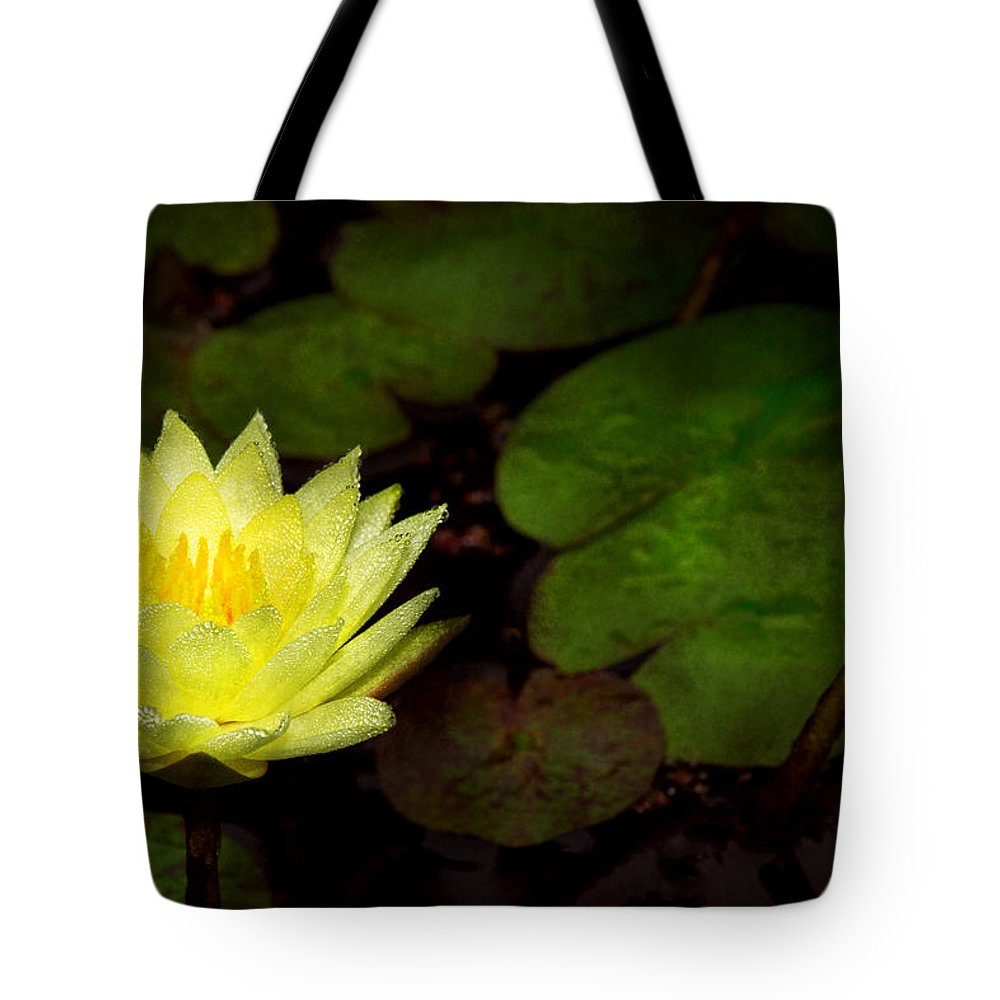 Lily Tote Bag featuring the photograph Flower - Lily - Morning Showers by Mike Savad