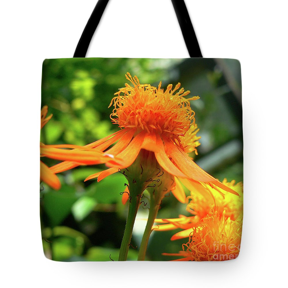 Flower Tote Bag featuring the photograph Flower Top by Angela Wright