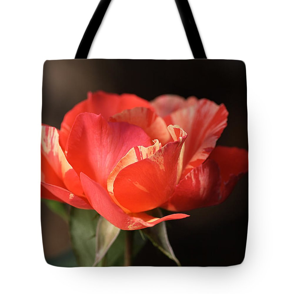 Flower Tote Bag featuring the photograph Flower-tri Toned-rose by Joy Watson