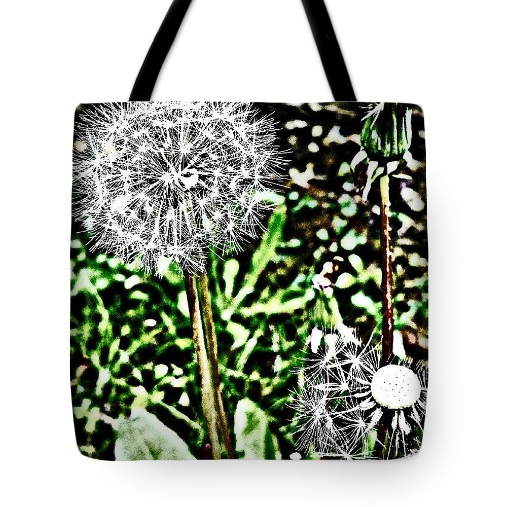 Beautiful Tote Bag featuring the photograph Dandelions by J Roustie