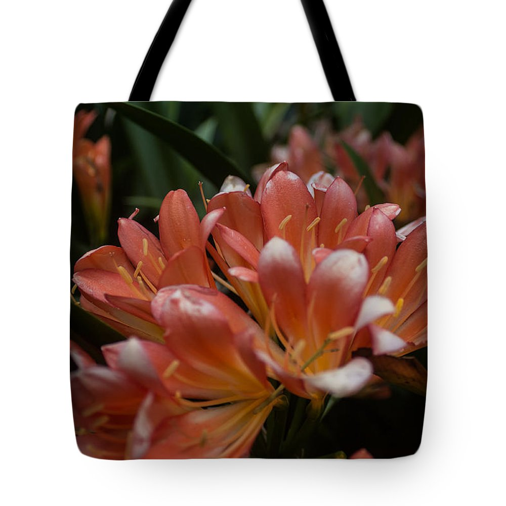 Flowers Tote Bag featuring the photograph Flowers by Michael Podesta