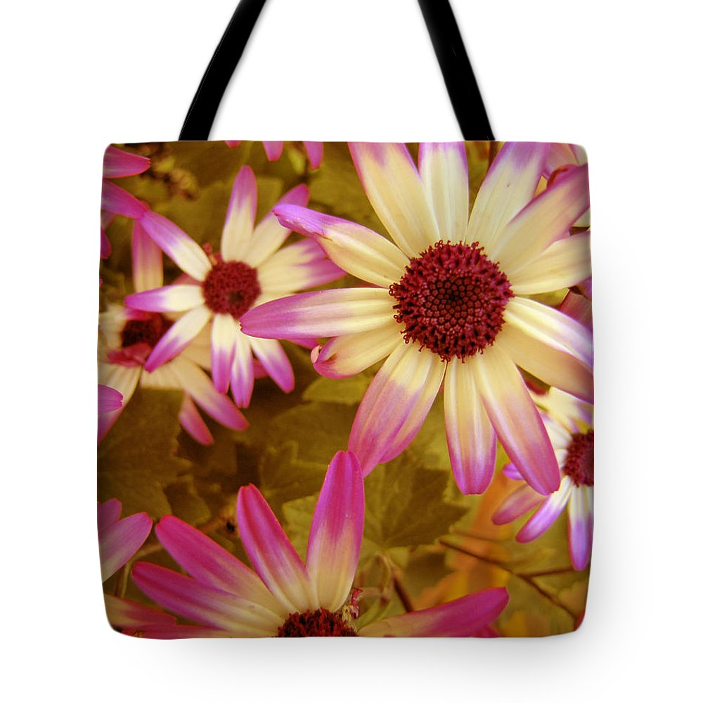 Flower Tote Bag featuring the photograph Flowers Pink And White by Ann Powell
