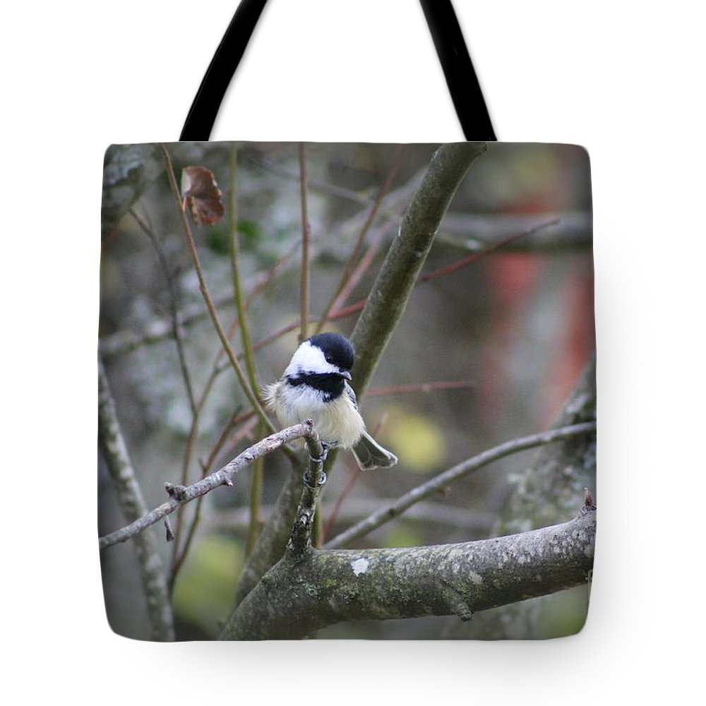 Christmas Tote Bag featuring the photograph Fluffy Chickadee by Leone Lund