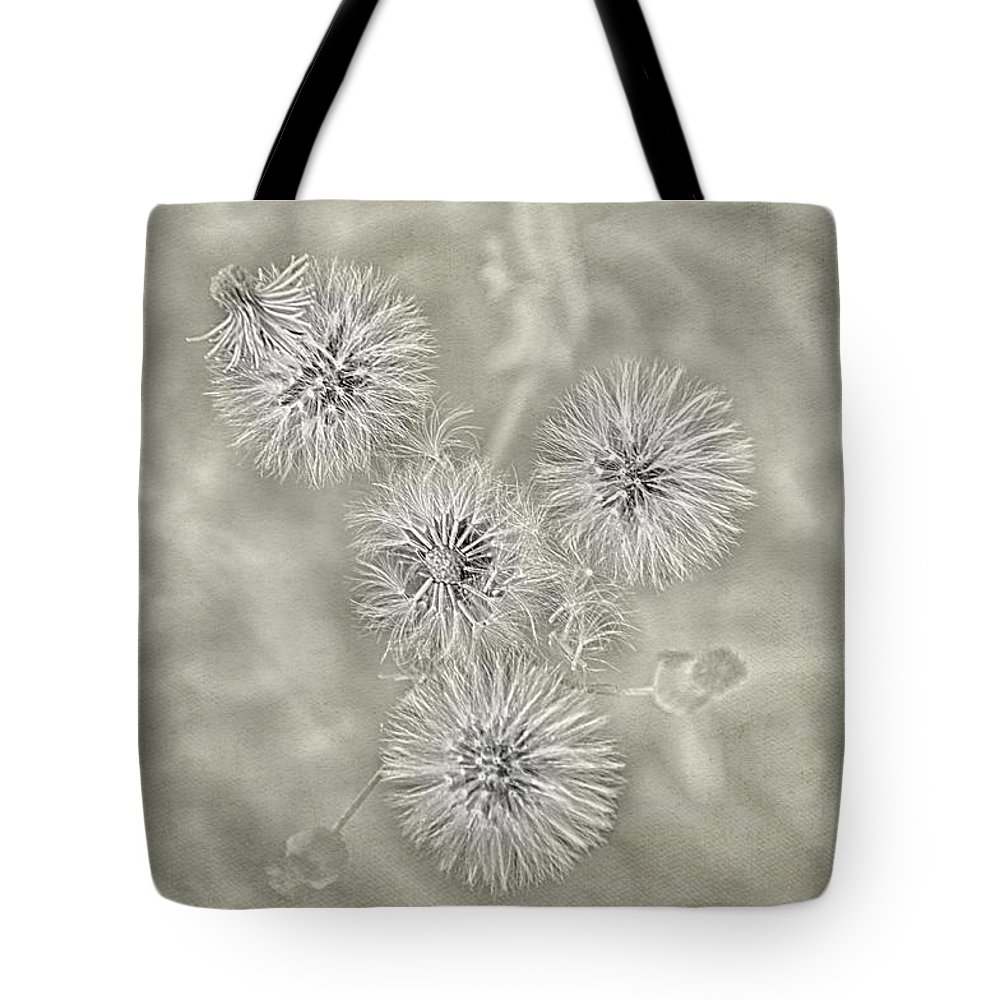 Dandelion Tote Bag featuring the photograph Fluffy Dandelions by Louise Hill