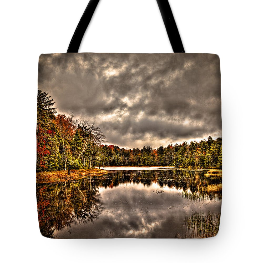 Adirondack's Tote Bag featuring the photograph Fly Pond Marsh II by David Patterson