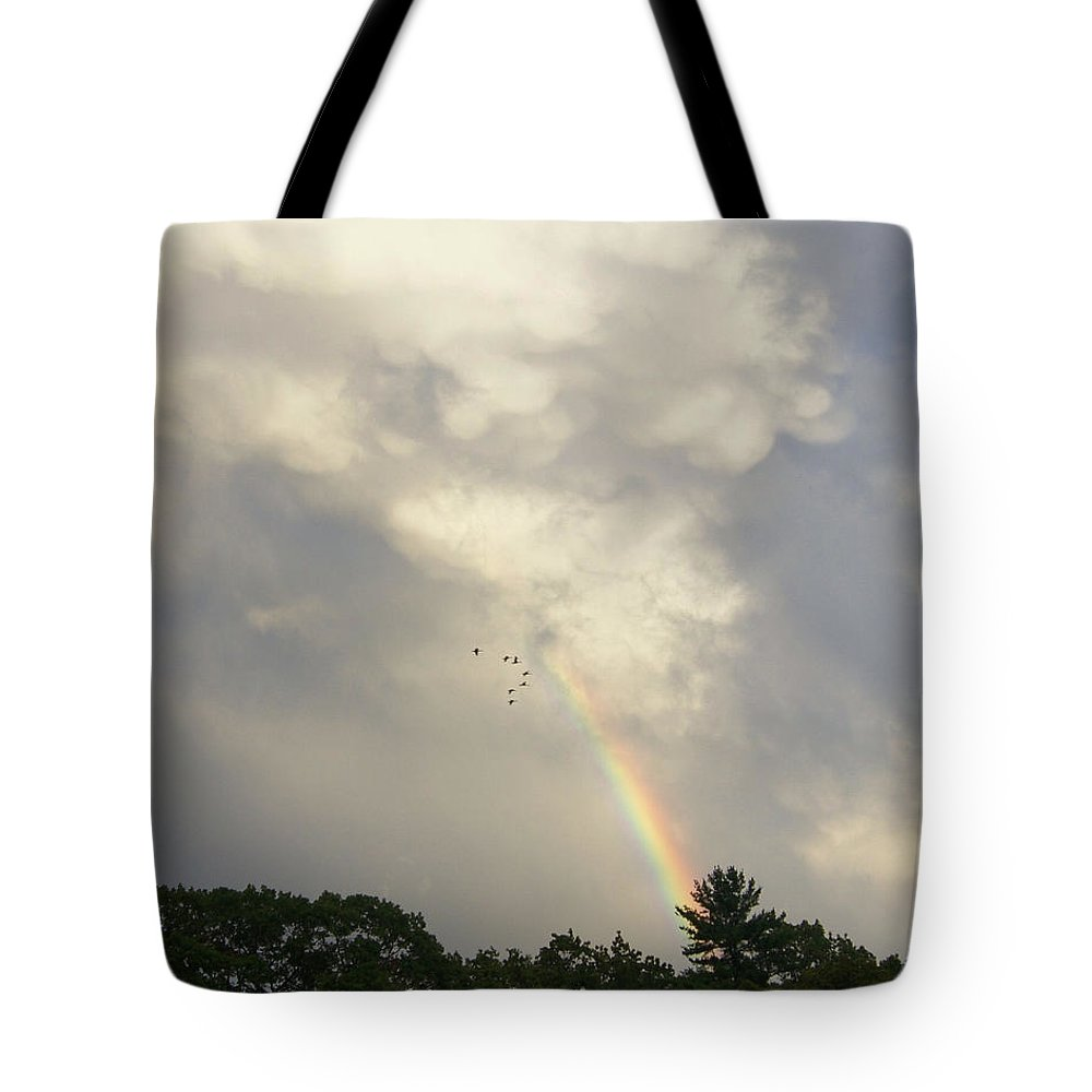 Rainbow Tote Bag featuring the photograph Flying Ahead by Joe Geraci