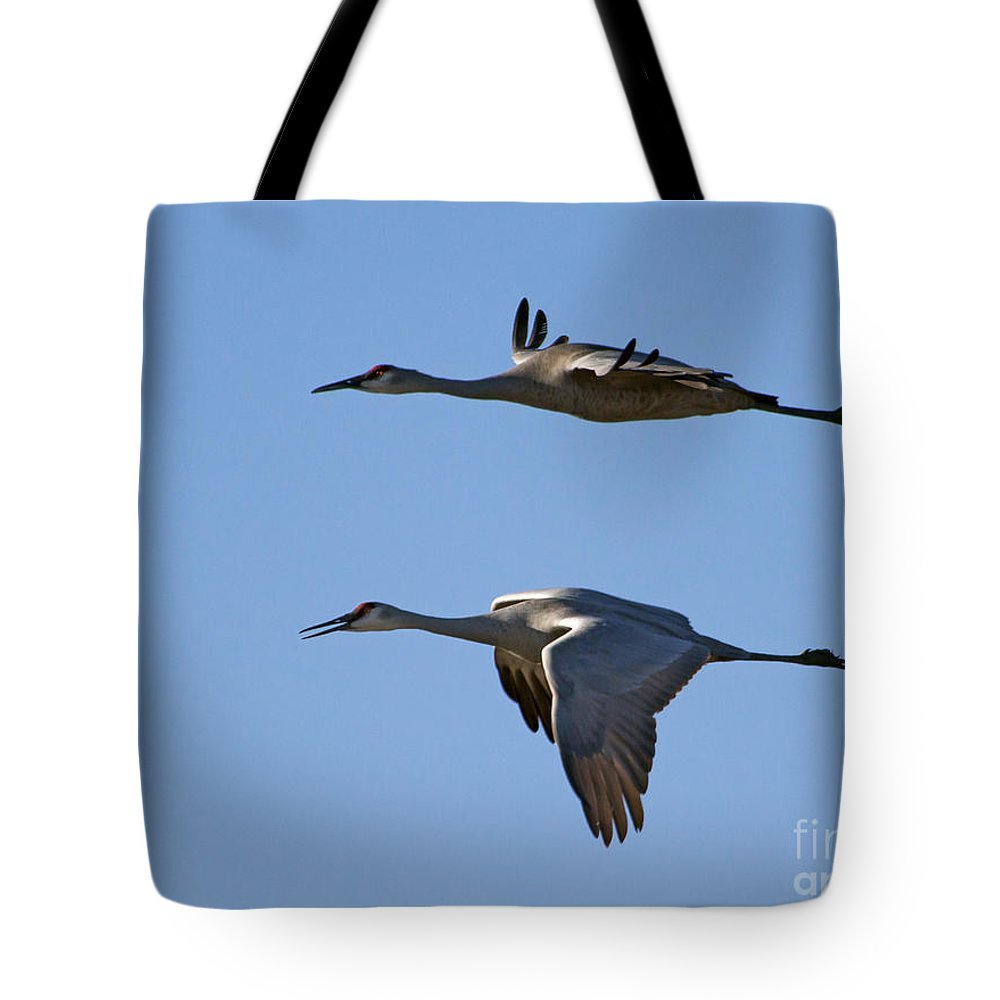 Cranes Tote Bag featuring the photograph Flying Close by J L Woody Wooden