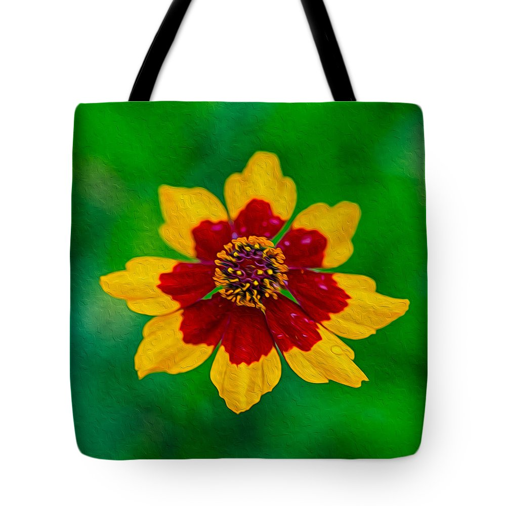 North Cascades Tote Bag featuring the painting Flying Colors by Omaste Witkowski