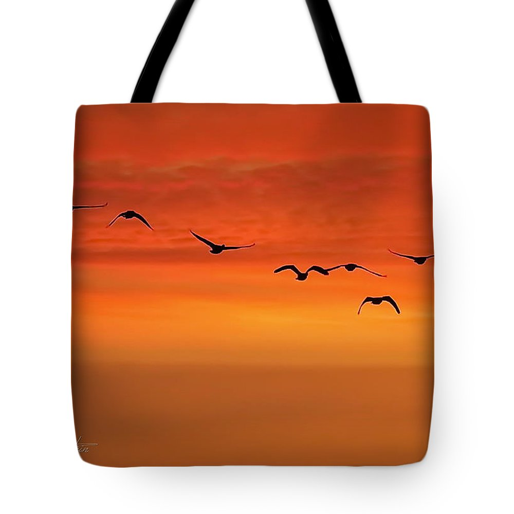Birds Tote Bag featuring the photograph Flying South by Cindy Greenstein