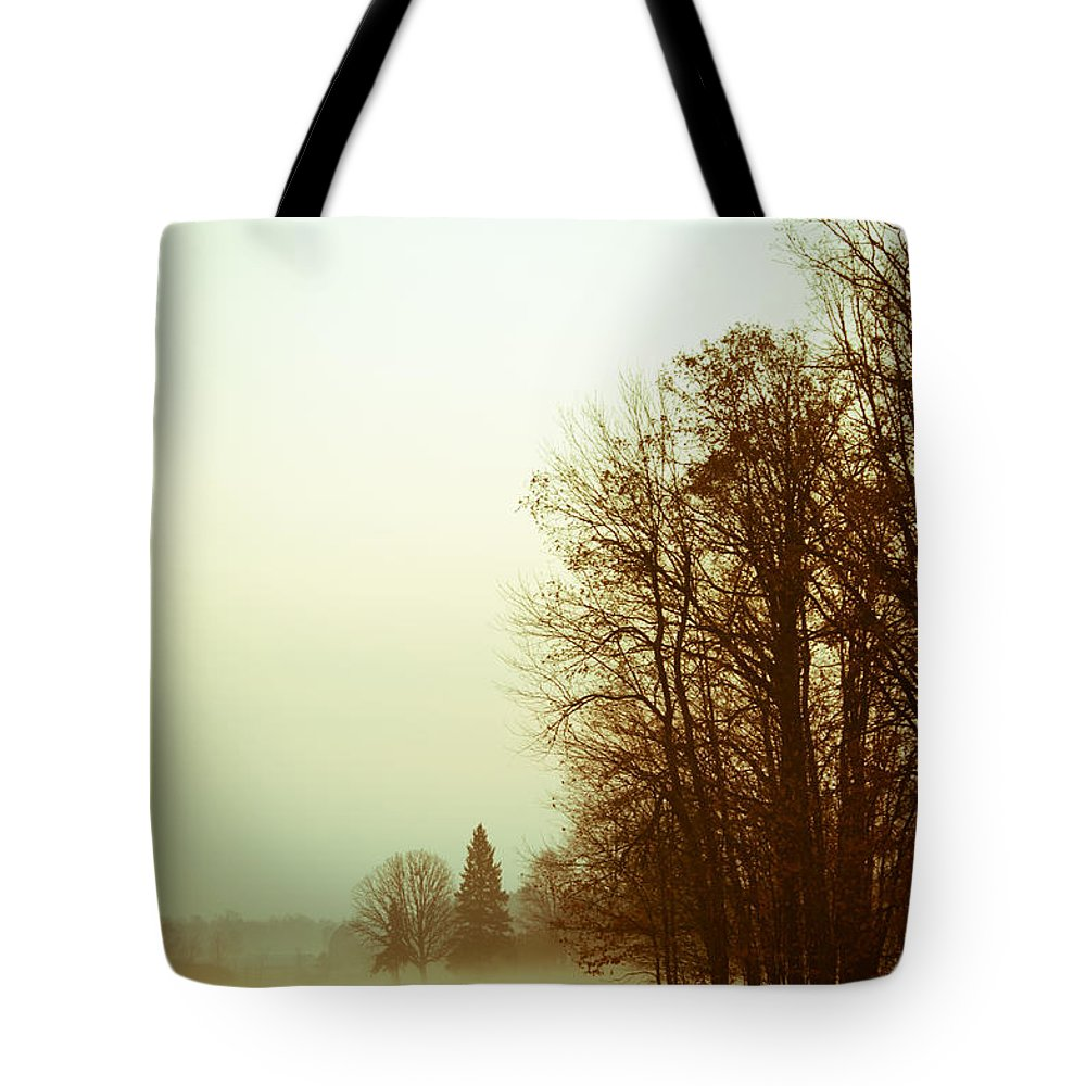 Landscapes Tote Bag featuring the photograph Foggy Morning by Cheryl Baxter