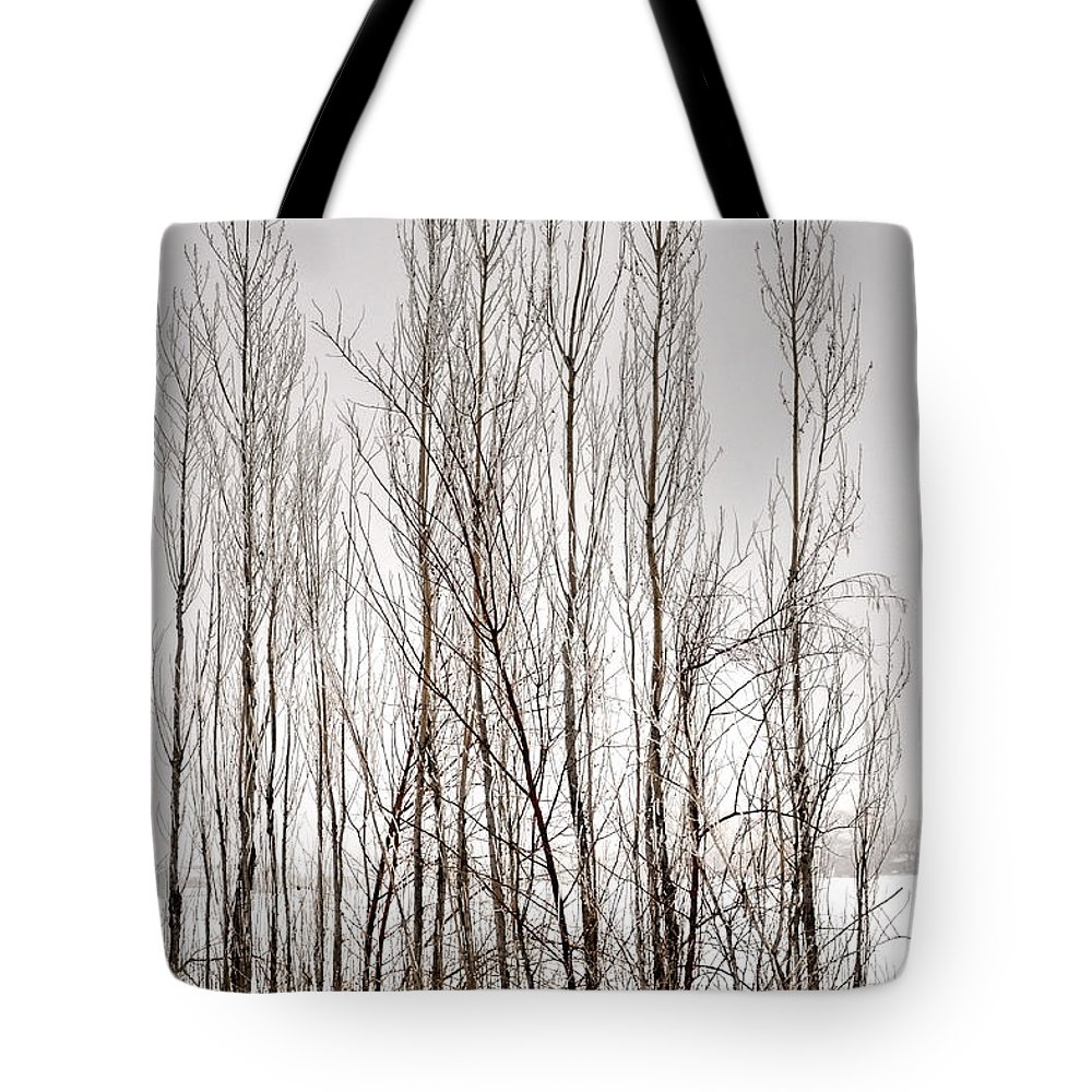 Season Tote Bag featuring the photograph Foggy Winter Tree Fence 13271 by Jerry Sodorff