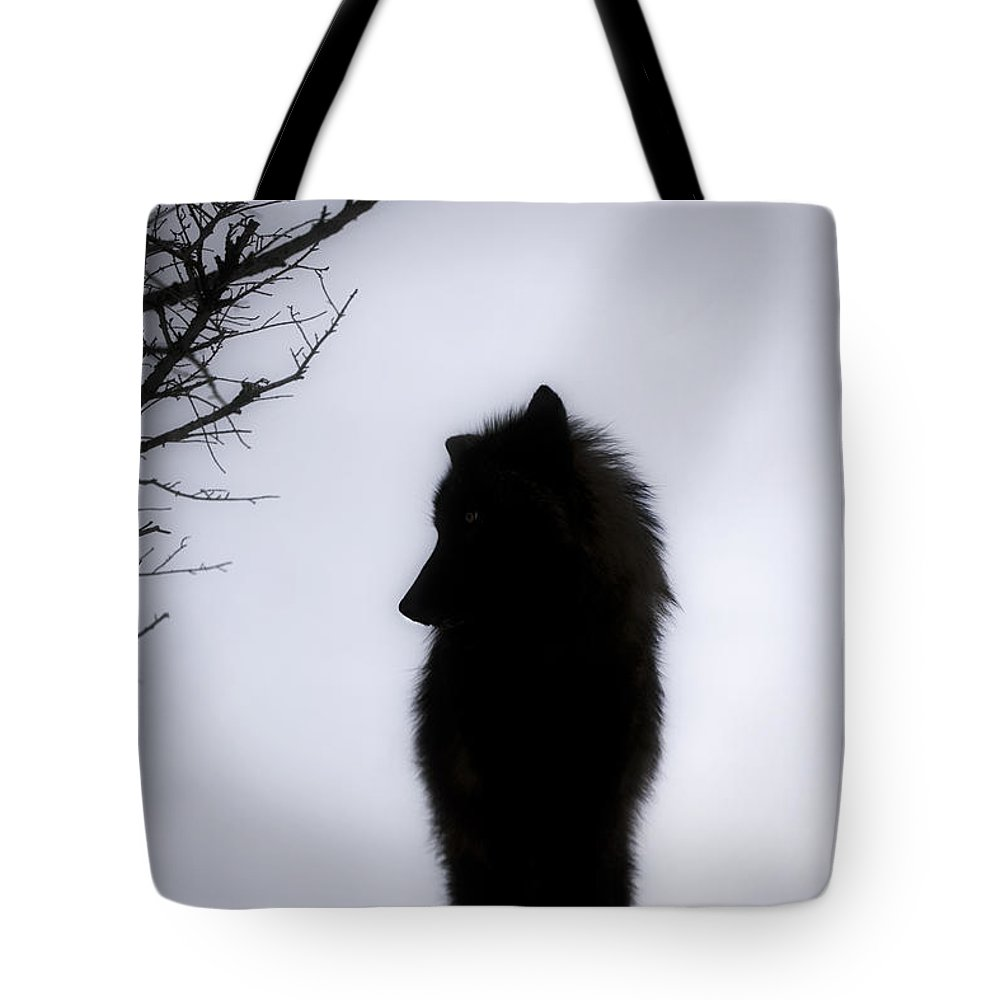 Wolf Tote Bag featuring the photograph Wolf Folklore by Wildlife Fine Art