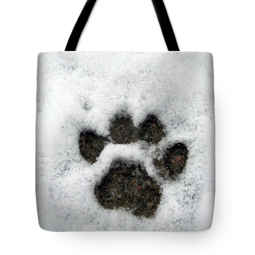 Footprint Tote Bag featuring the photograph Footprint Series. Cat by Ausra Huntington nee Paulauskaite