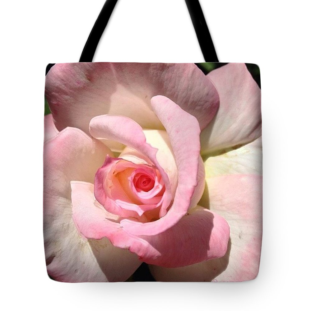 For My Sweetheart Tote Bag featuring the photograph For My Sweetheart by Anna Porter