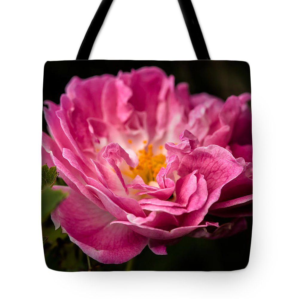 Rose Tote Bag featuring the photograph For You by Edgar Laureano