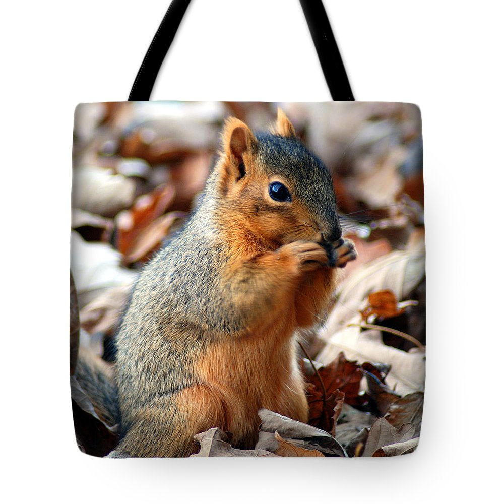 Squirrel Tote Bag featuring the photograph Foraging Through The Autumn Leaves by Optical Playground By MP Ray