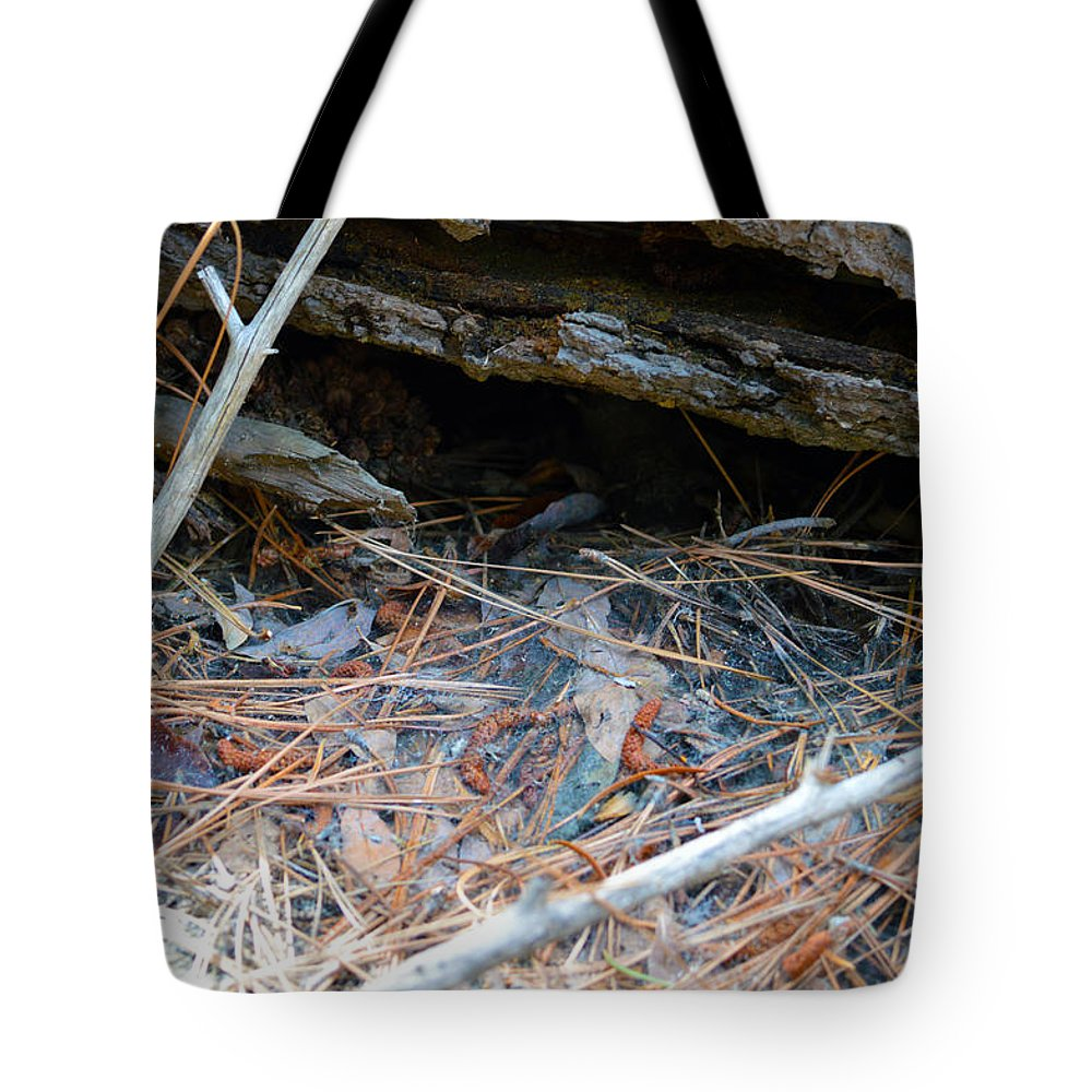 Nevada Tote Bag featuring the photograph Forest Floor 2 by Brent Dolliver
