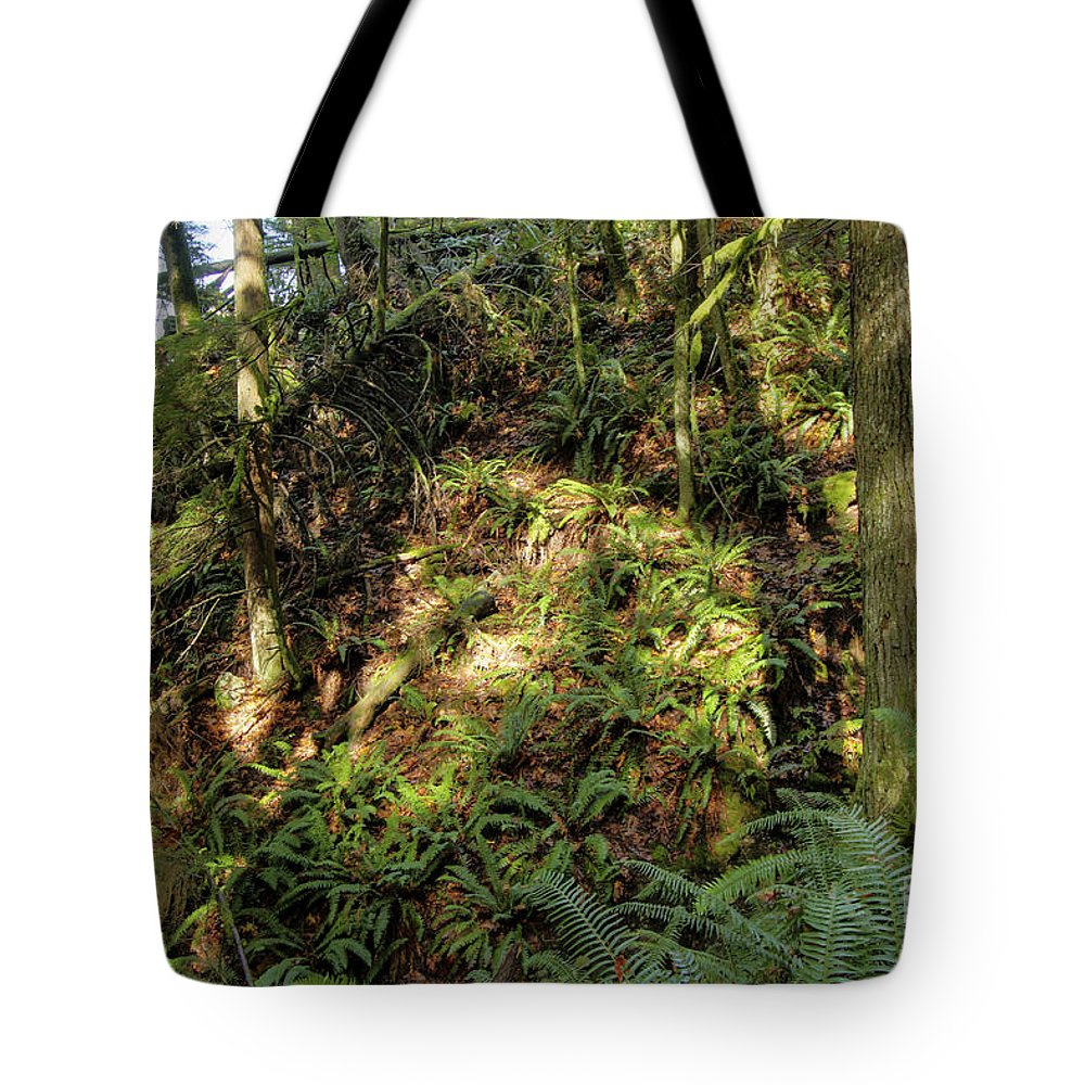 Landscape Tote Bag featuring the photograph Forest Floor by Darleen Stry