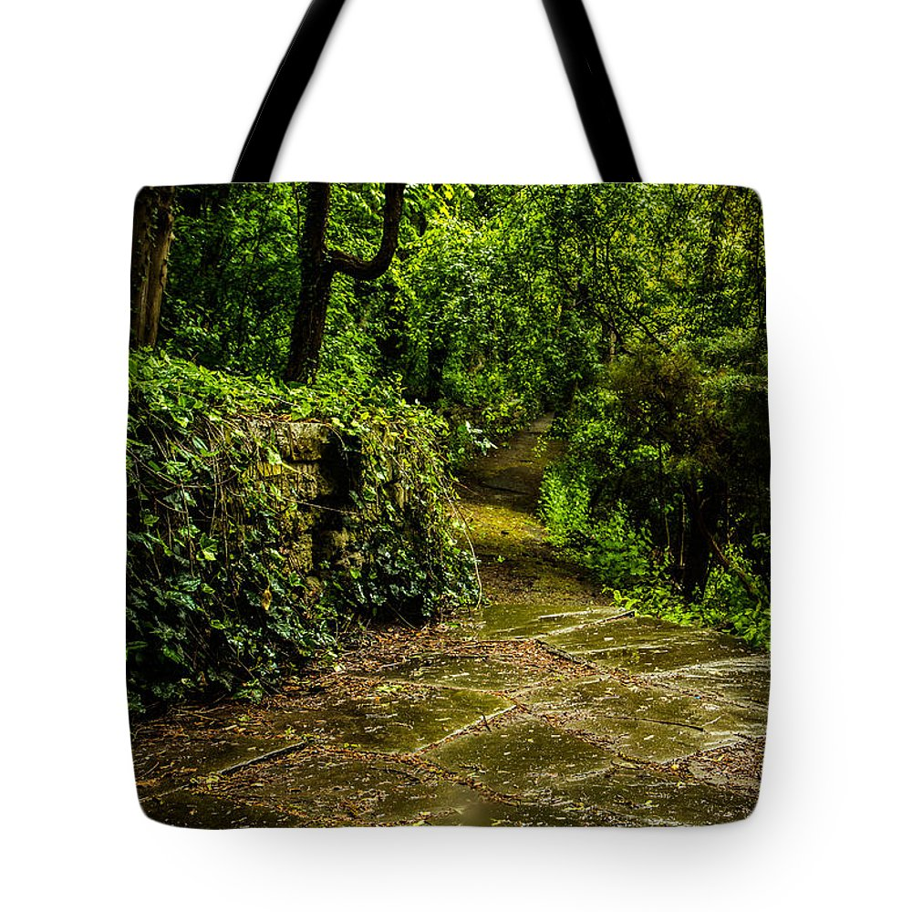 Forest Tote Bag featuring the photograph Forest Path by Mary Smyth