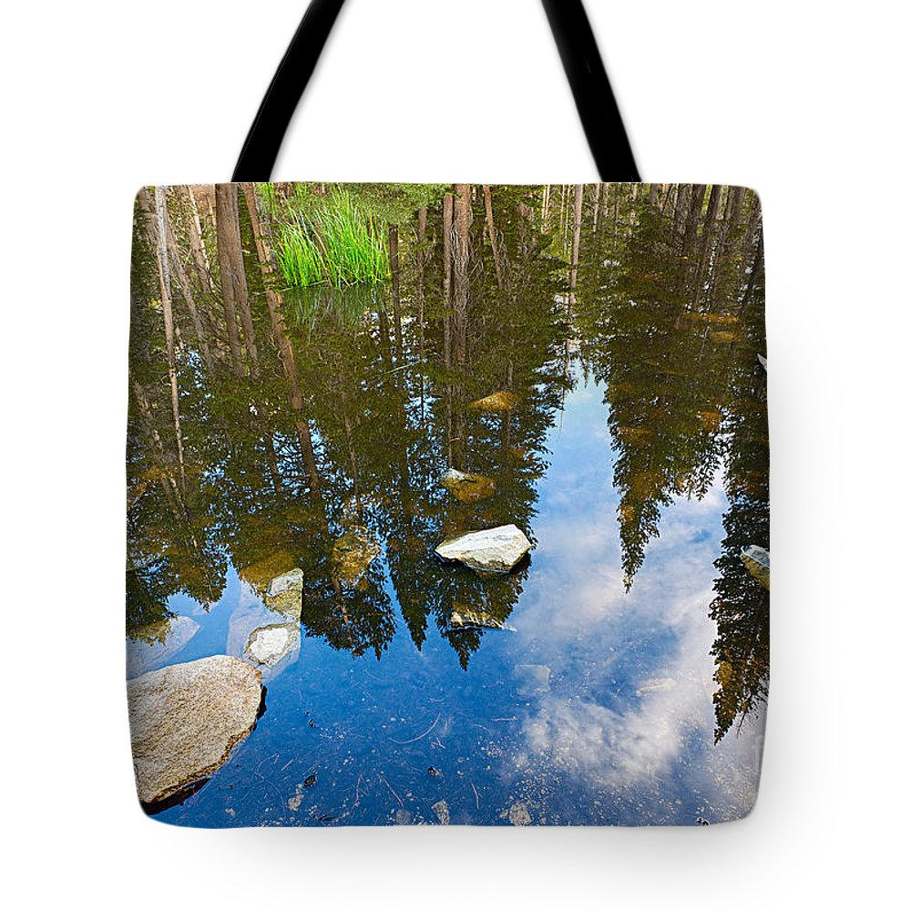 Forest Tote Bag featuring the photograph Forest Reflection by Jamie Pham