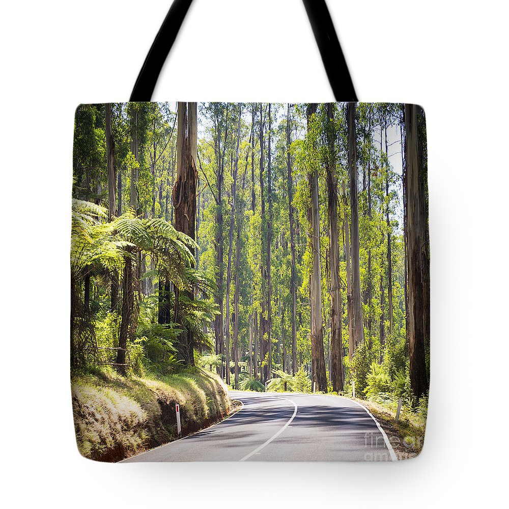 Black Tote Bag featuring the photograph Forest Road by Tim Hester