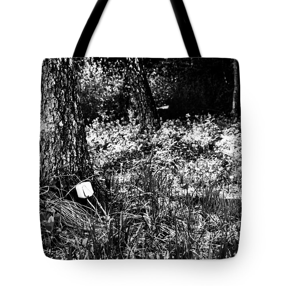 Socket Tote Bag featuring the photograph Forest Socket by Yevgeni Kacnelson