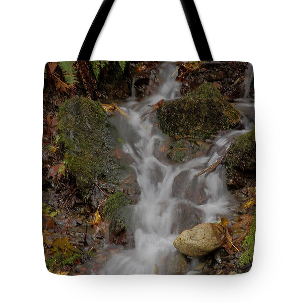Landscape Tote Bag featuring the photograph Forest Stream Cascade by Darleen Stry