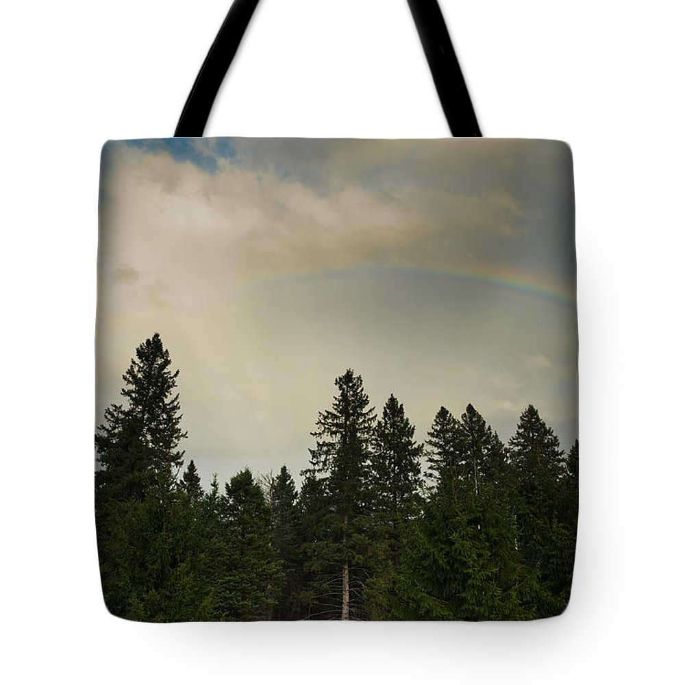 Landscapes Tote Bag featuring the photograph Forest Under The Rainbow by Cheryl Baxter