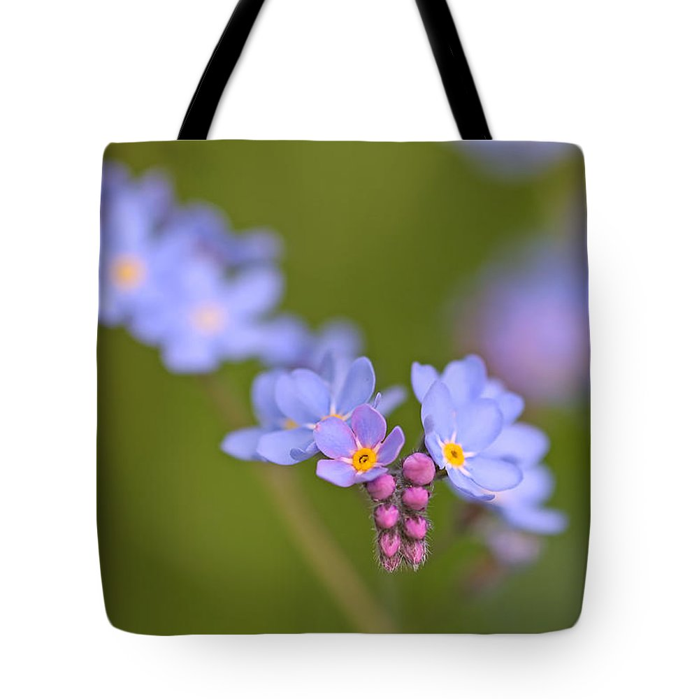 Forget Me Nots Tote Bag featuring the photograph Forget Me Nots by Peggy Collins
