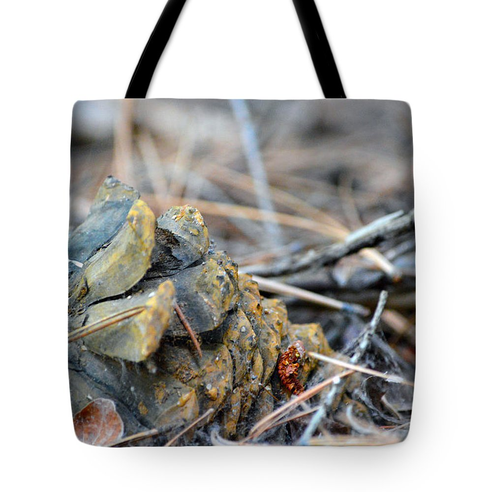 Nevada Tote Bag featuring the photograph Forgotten Pine Cone 2 by Brent Dolliver