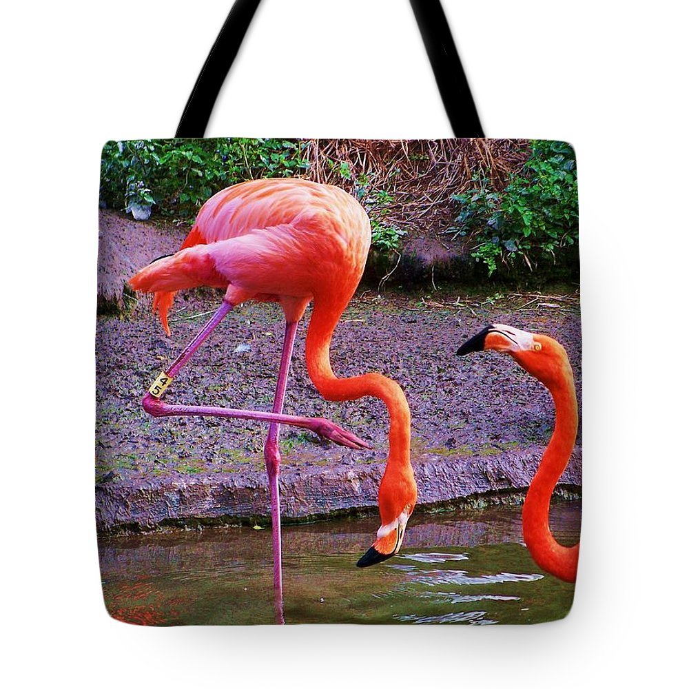 Four Tote Bag featuring the photograph Four by Chuck Hicks