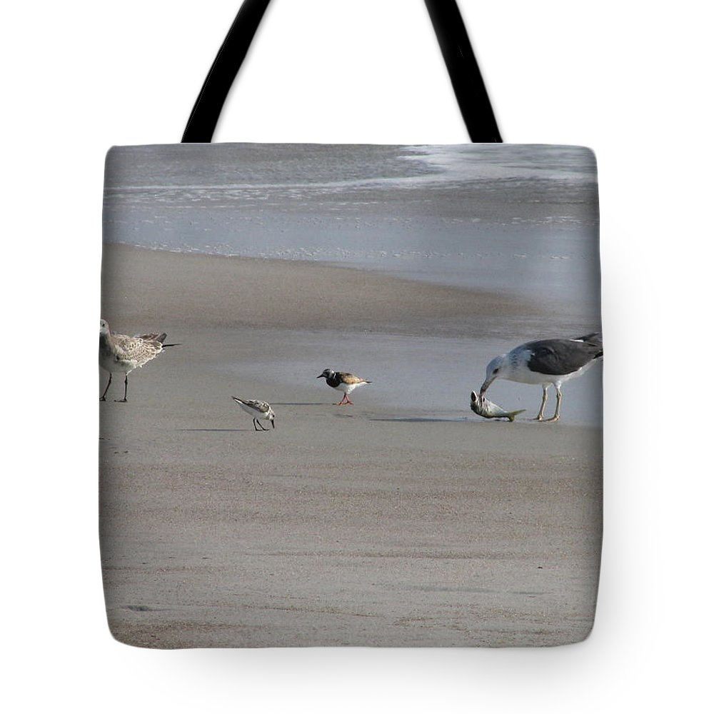 Animals Tote Bag featuring the photograph Four Feathers And A Fish by Ellen Meakin