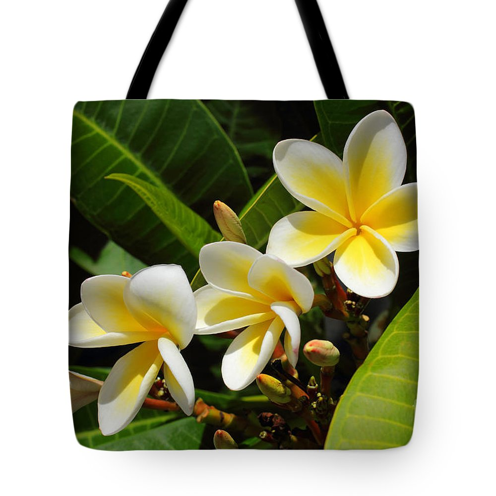 Summer Tote Bag featuring the photograph Four Summer Frangipanis by Layla Alexander