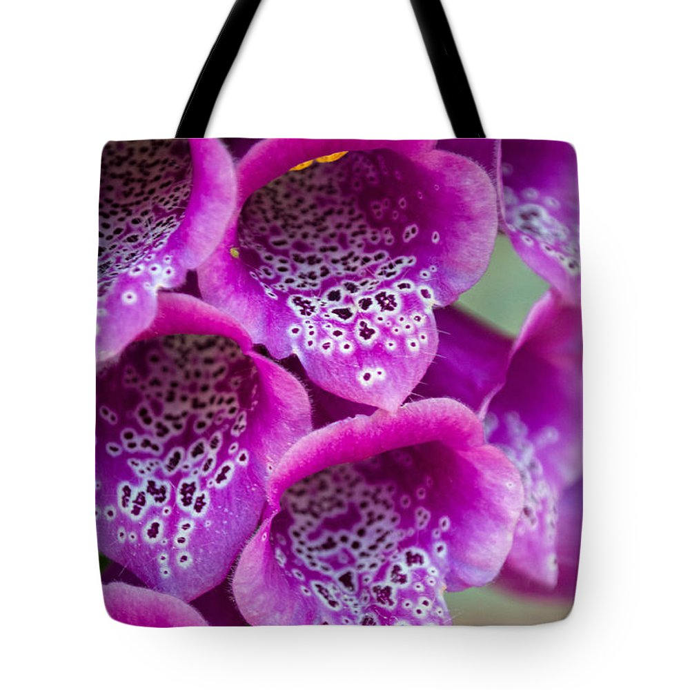 Pink Tote Bag featuring the photograph Fox Glove by Tikvah's Hope