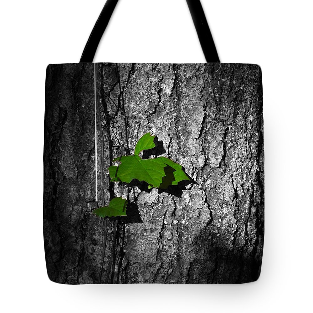 Phil Tote Bag featuring the photograph Fox Grape On Pine by Phil Penne