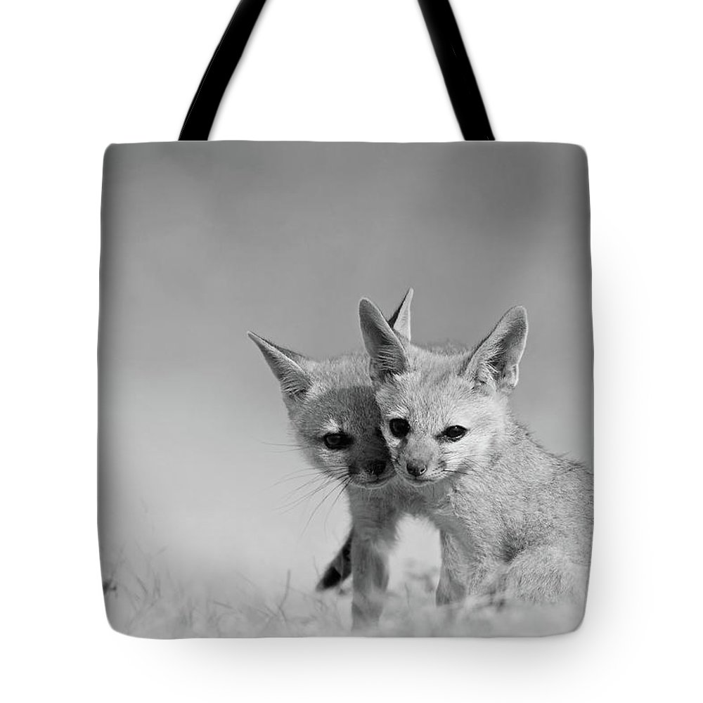 Grass Tote Bag featuring the photograph Fox Tits by Santanu Nandy