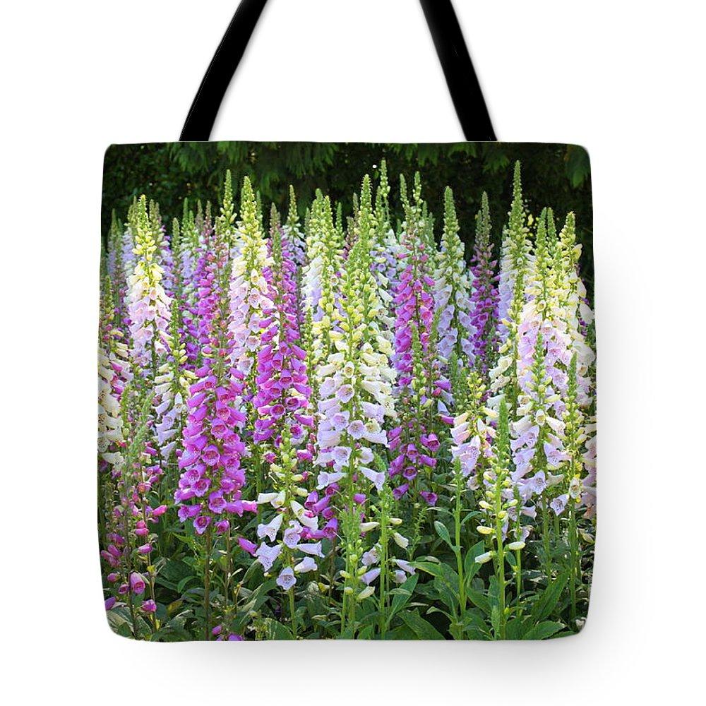 Garden Tote Bag featuring the photograph Foxglove Garden In Golden Gate Park by Carol Groenen