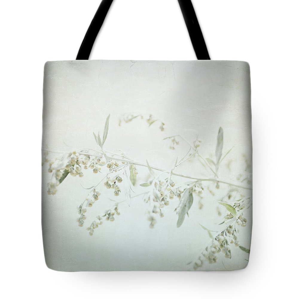 Home Decor Tote Bag featuring the photograph Fragile - British Columbia - Square by Lisa Parrish