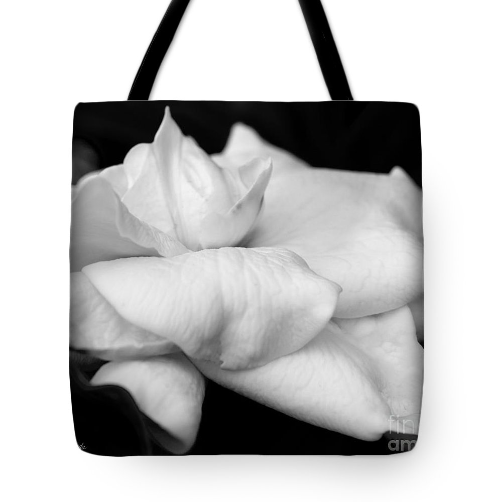 Fragrant Petals Tote Bag featuring the photograph Fragrant Petals by Michelle Constantine