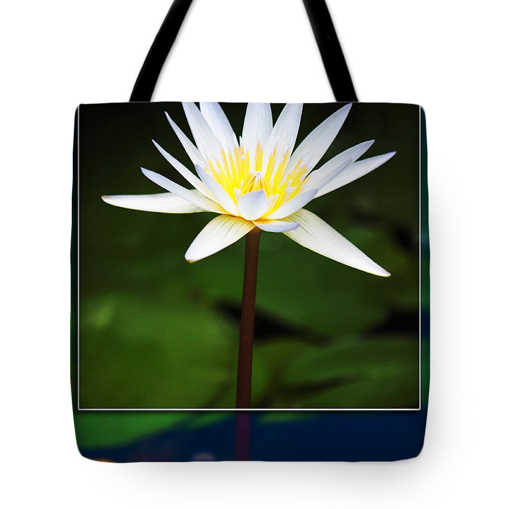 White Flower Tote Bag featuring the photograph Framed Serenity by Nishanth Gopinathan