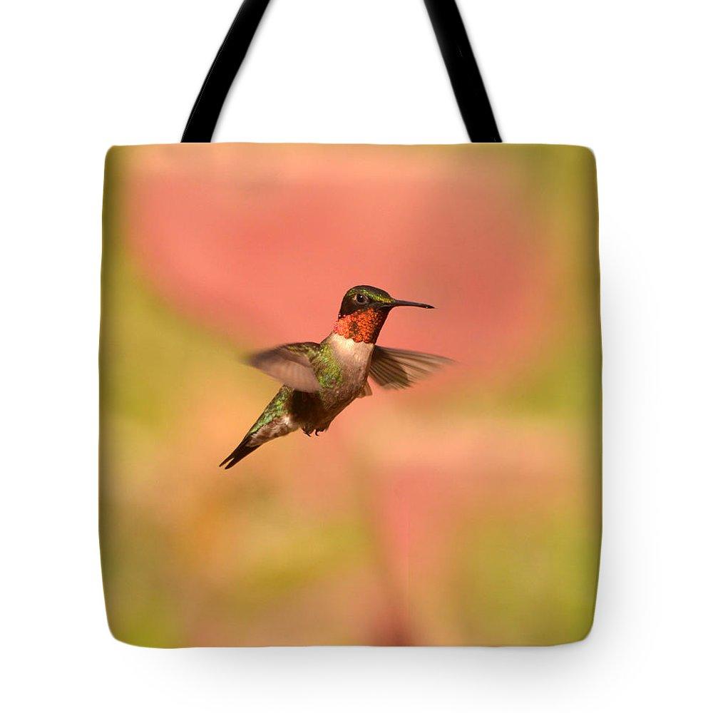 Hummingbird Tote Bag featuring the photograph Free As A Bird by Lori Tambakis