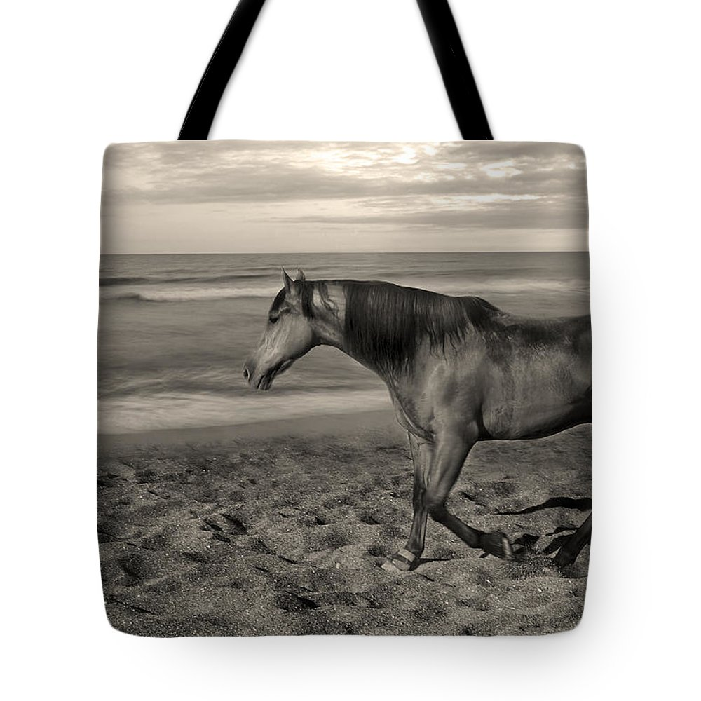 Free Tote Bag featuring the photograph Freedom by Gina Dsgn