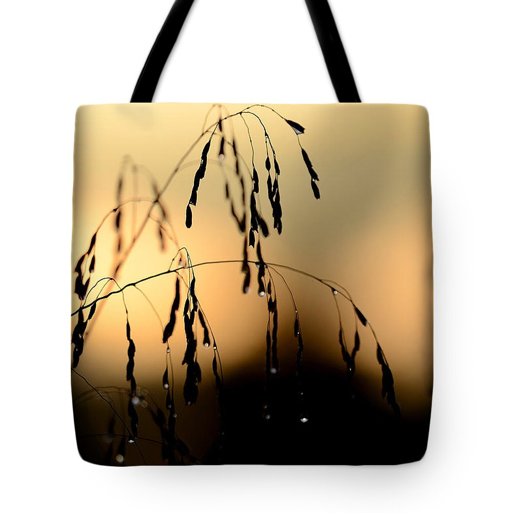 Sunrise Tote Bag featuring the photograph Freedom by Melanie Moraga